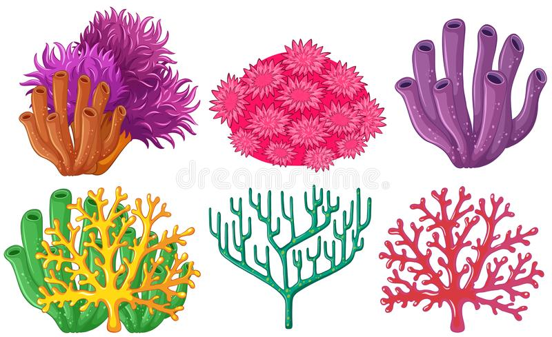 Different types of coral reef stock vector illustration of plant download different types of coral reef stock vector illustration of plant colorful 102667694 publicscrutiny Gallery