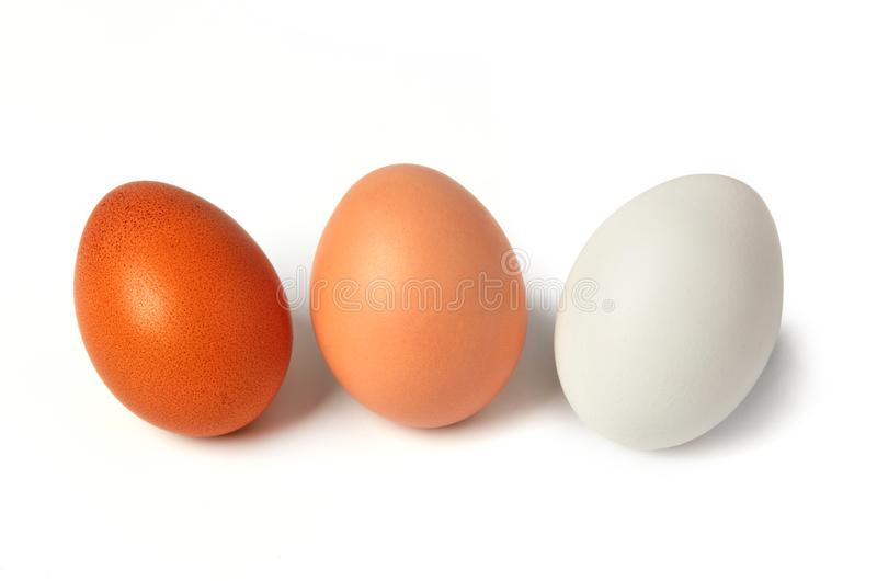 Different types of eggs. Isolated on white stock photos