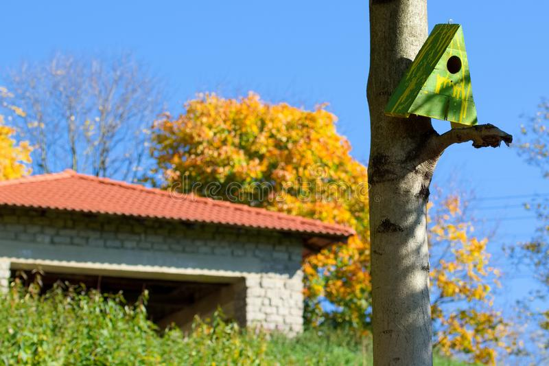 Two houses on the tree. Different types of houses - one for people second for birds stock image