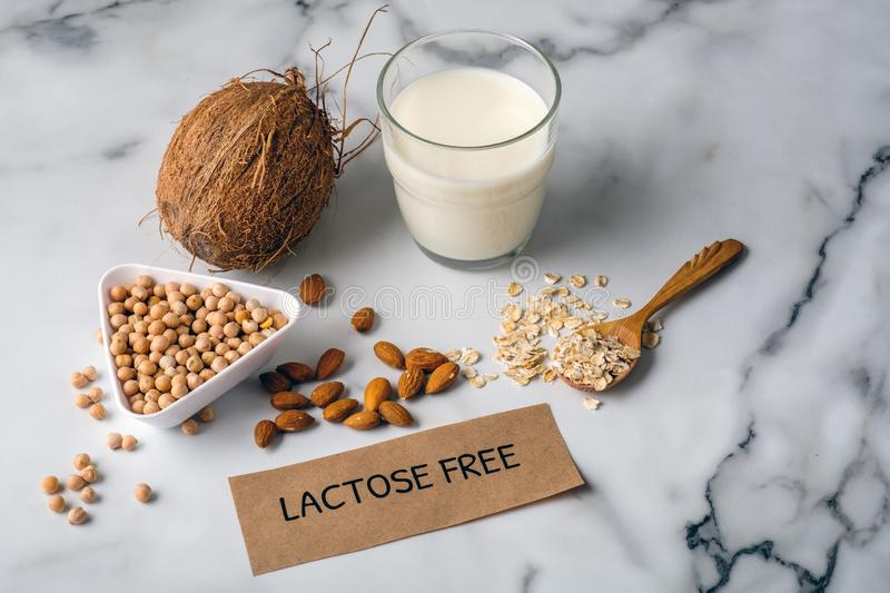 Different types ingredients of non-dairy milk and glass of milk. Organic substitute, alternative lactose free milk type for vegan royalty free stock photography