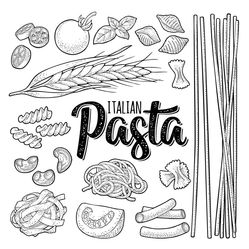 Different types macaroni and ITALIAN PASTA lettering. Vector engraving stock illustration