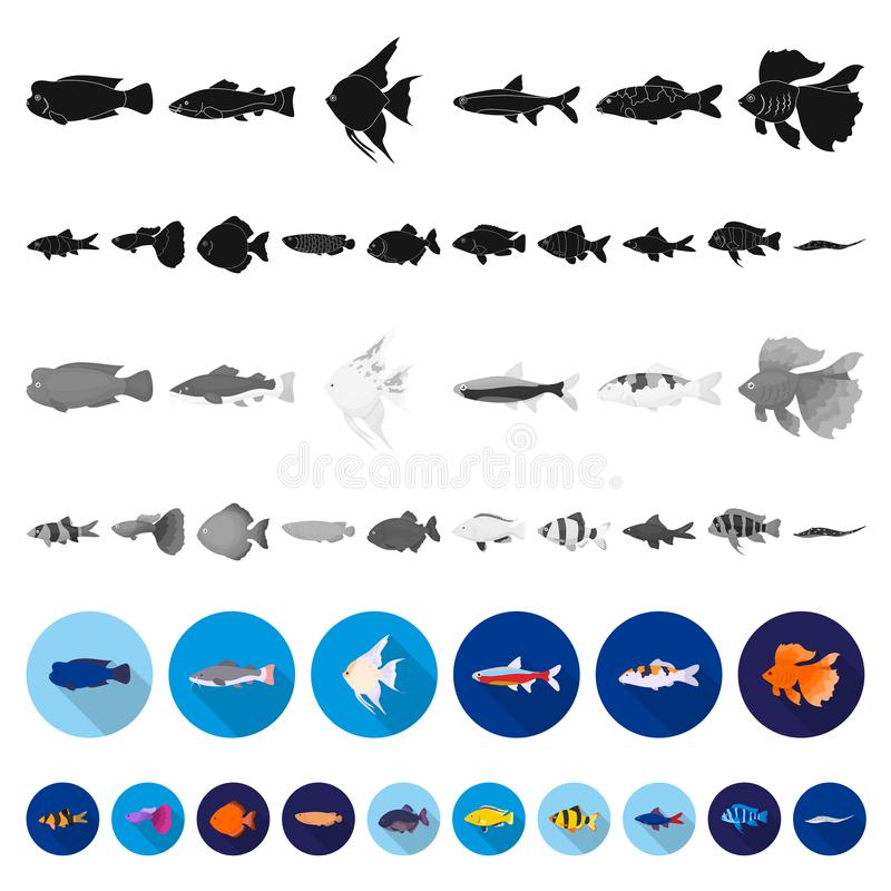 Free Different Types Of Fish Flat Icons In Set Collection For Design. Marine And Aquarium Fish Vector Symbol Stock Web Royalty Free Stock Image - 128243146
