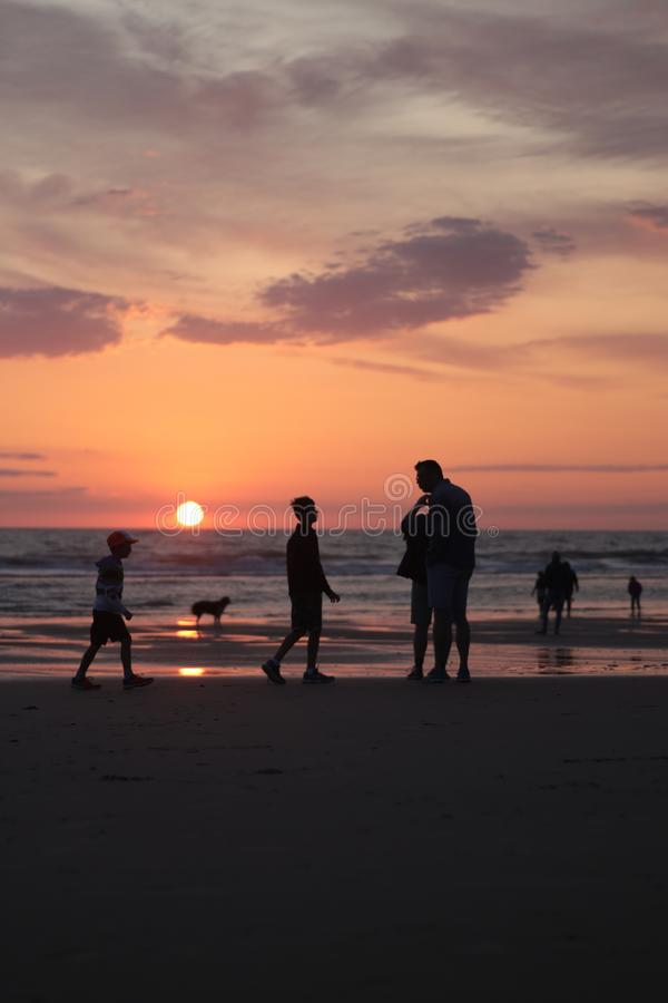 Different types of silouette people at the beach during a beautiful sunset in France montalivet. Dogs, photography, taking, reflection, down, sunrise, clouds royalty free stock images
