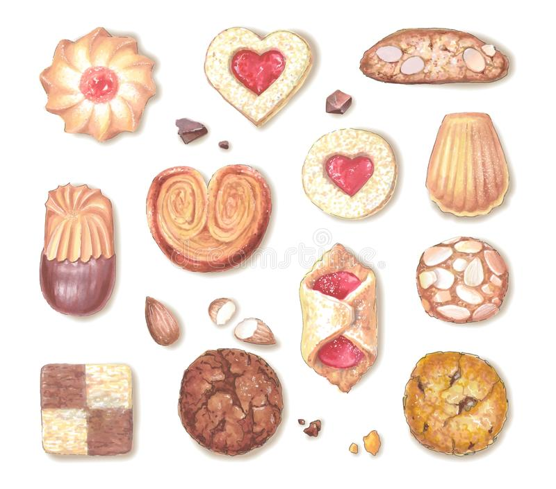 Different types of sweet cookies. Realistic vector illustration stock illustration
