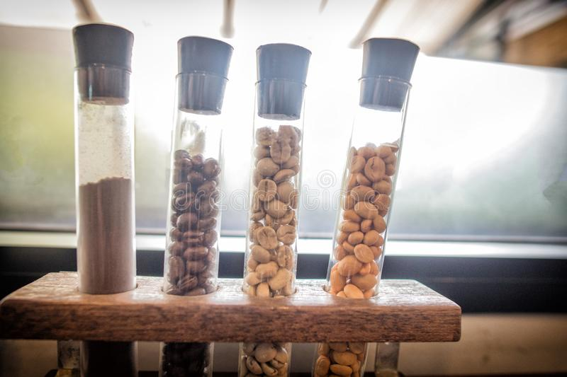 Different varieties of fresh arabica coffee beans in tube from around the world in different color. raw and roasted beans stock images