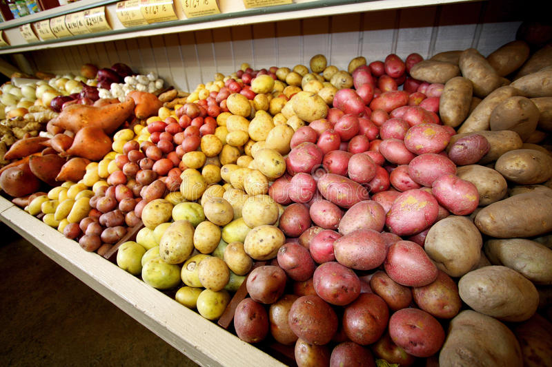 Different varieties of potatoes royalty free stock photography