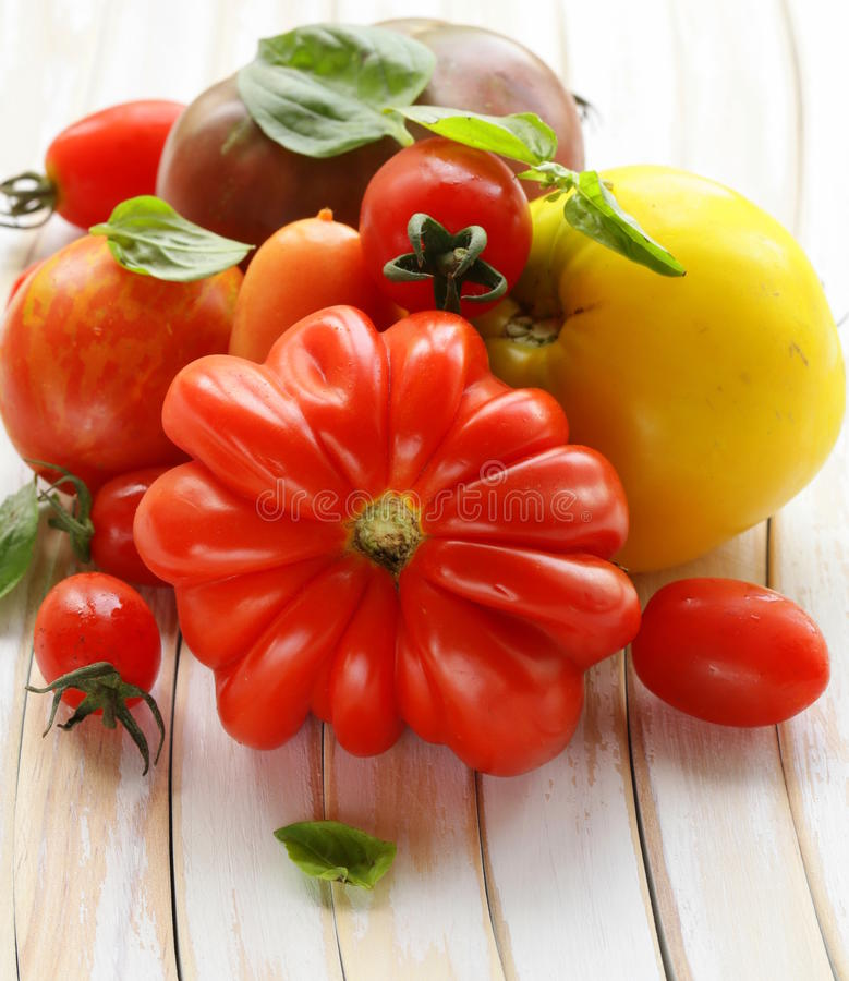 Different varieties of tomato with basil royalty free stock photography