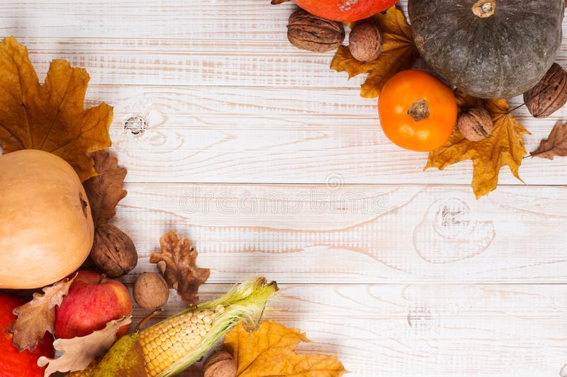 Different vegetables, pumpkins, apples, pears, nuts, corn, tomatoes and dry leaves on white wooden background. Autumn Harvest stock images