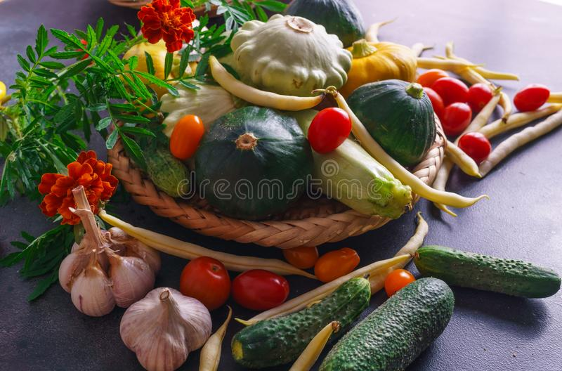 Different vegetables, small patissons, along with other vegetables, cauliflower, broccoli, garlic, cucumbers grown on an eco-farm.  royalty free stock photos