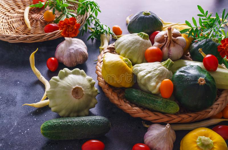 Different vegetables, small patissons, along with other vegetables, cauliflower, broccoli, garlic, cucumbers grown on an eco-farm.  stock image