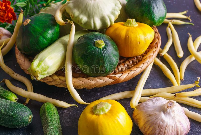 Different vegetables, small patissons, along with other vegetables, cauliflower, broccoli, garlic, cucumbers grown on an eco-farm.  royalty free stock photography