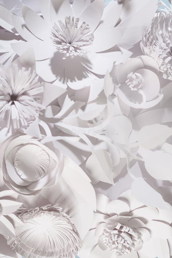 Different white paper flower on white background. Handmade stock images