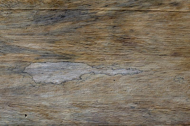 Different wood textures and backgrounds II royalty free stock photo