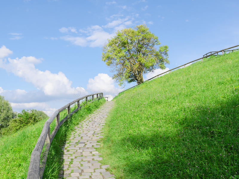 Difficult cobble stones upward path. Difficult cobble stones path upward in direction to the top of green hill royalty free stock image