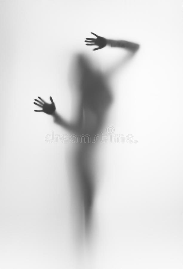 Diffuse silhouette of a beautiful woman, plams stock images