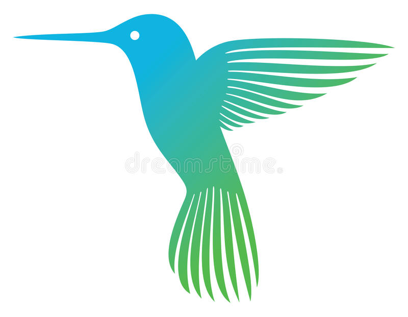 Colibri illustration stock