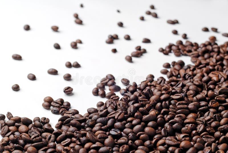 Diffusion fraîche de grains de café images libres de droits