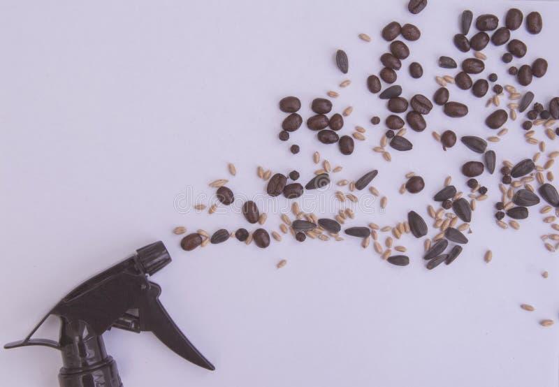 Diffusione delle emozioni del cereale fotografia stock