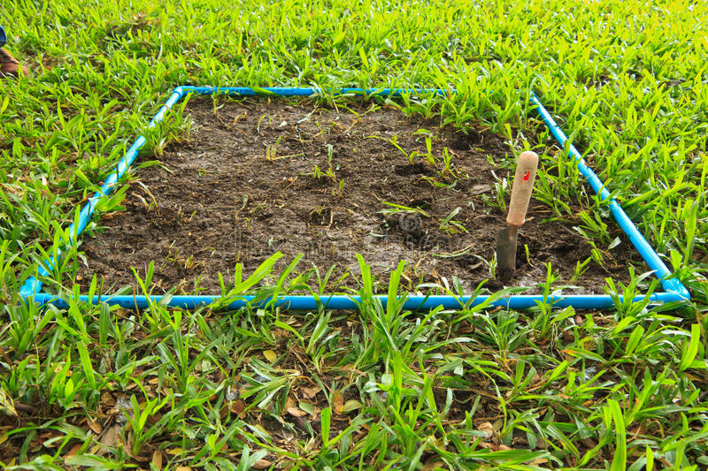Dig. A soil and grass for research amount of Carbon in soil. This research is about environment royalty free stock photo