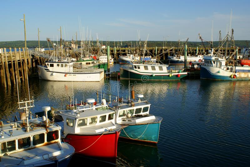 Digby fishing boats stock photos
