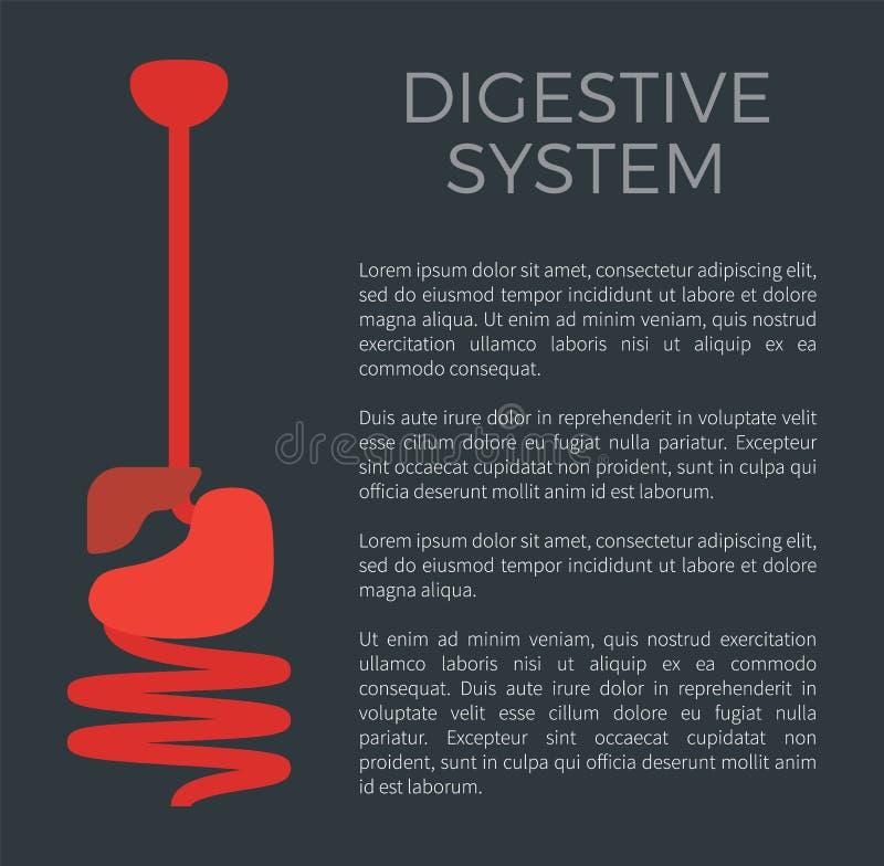 Digestive System Black Poster Vector Illustration royalty free illustration