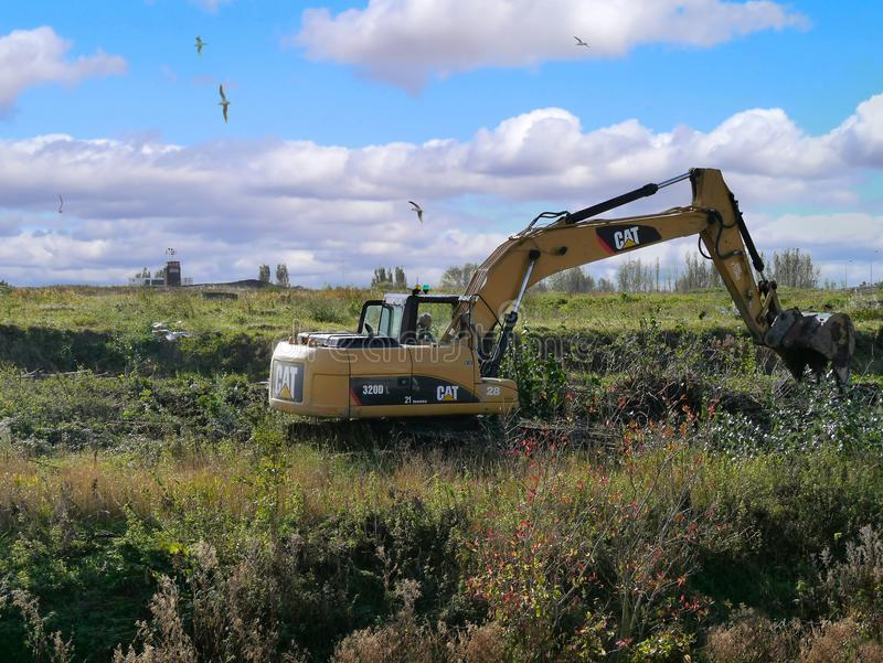 Digger doing reclamation work. Digger working in undergrowth reclamation work with seagulls above stock photo