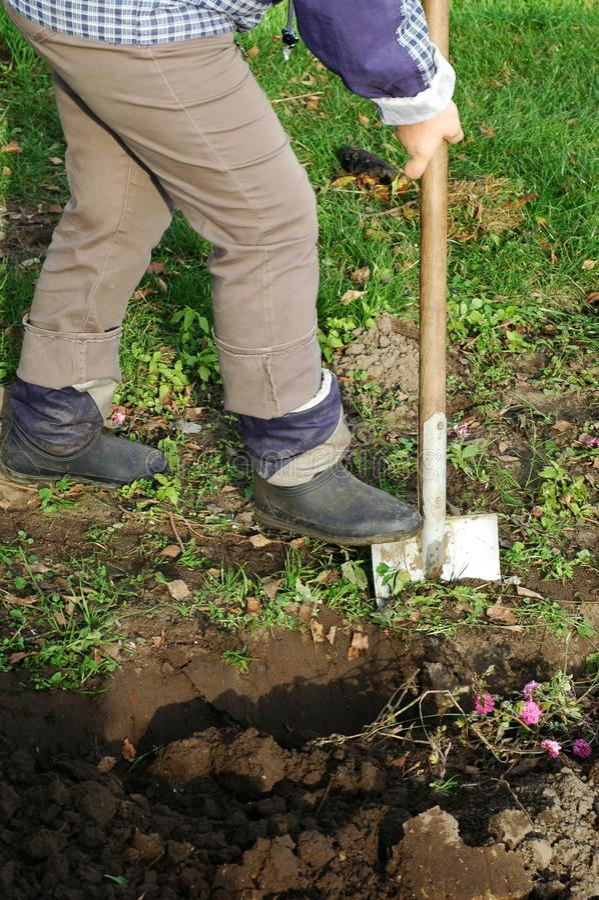 digging stock afbeelding
