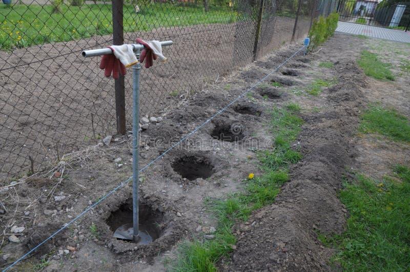 digging stock foto