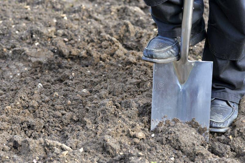 digging royalty-vrije stock afbeelding