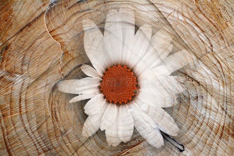 Digiart - eine Blume stockbilder