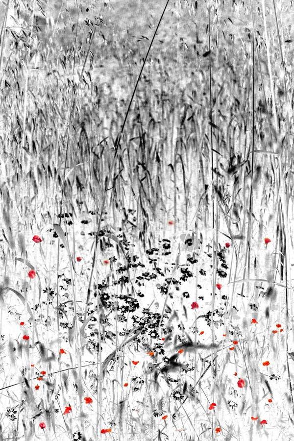 Digitaces Art Wild Flowers en hierba larga fotos de archivo libres de regalías