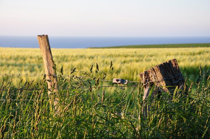 Download Beautiful East-European Landscape Image Stock Photo - Image of website, landscape: 32504588
