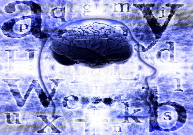 Digital brain royalty free stock image