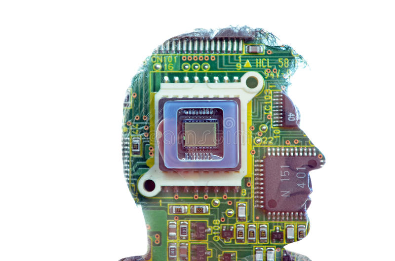 Digital brain. The abstract image symbolizing the human brain as a processor royalty free stock photos
