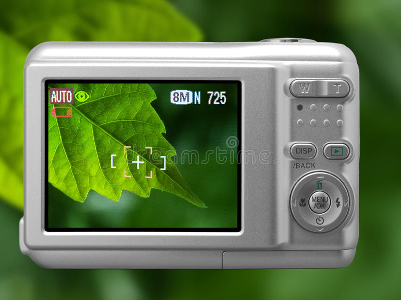 Download Digital camera stock photo. Image of compact, leaf, steel - 10568618