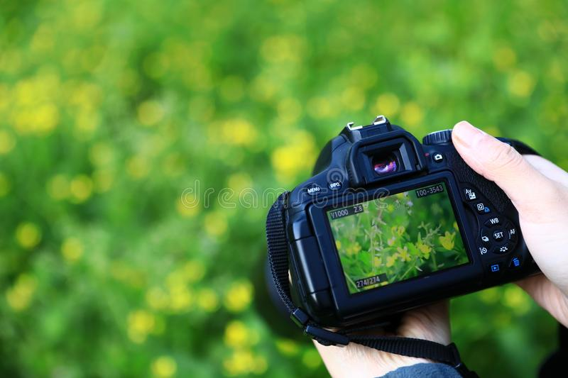 Digital camera capturing beautiful landscape. With woman hand stock image