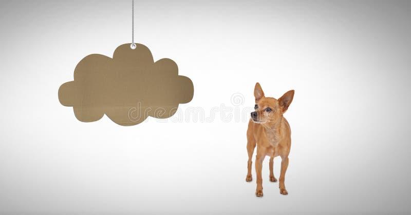 Dog looking at cardboard cloud hanging. Digital composite of Dog looking at cardboard cloud hanging stock images