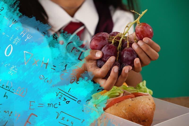 Composite image of digital composite image of algebraic formulas. Digital composite image of algebraic formulas against schoolgirl having grape fruit royalty free illustration