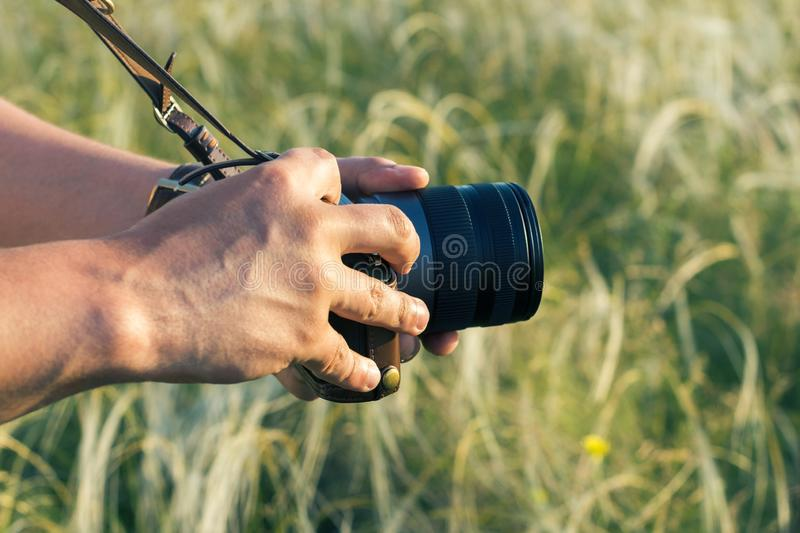The digital DSLR camera in a hand. Male hands with camera take photo of green grass stock photo
