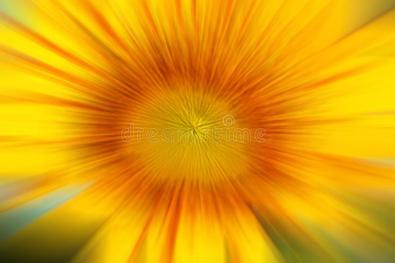 Sunflower petals in blur motion background. Blurry Sunflower nature texture closeup. Abstract flora nature illustration background. Digital effect background of royalty free stock photography