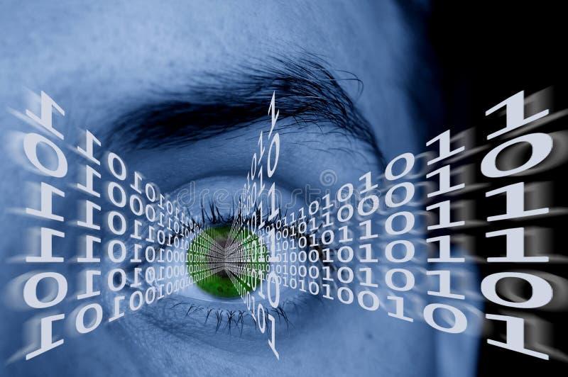 Download Digital eye stock image. Image of pupil, internet, stare - 2670629