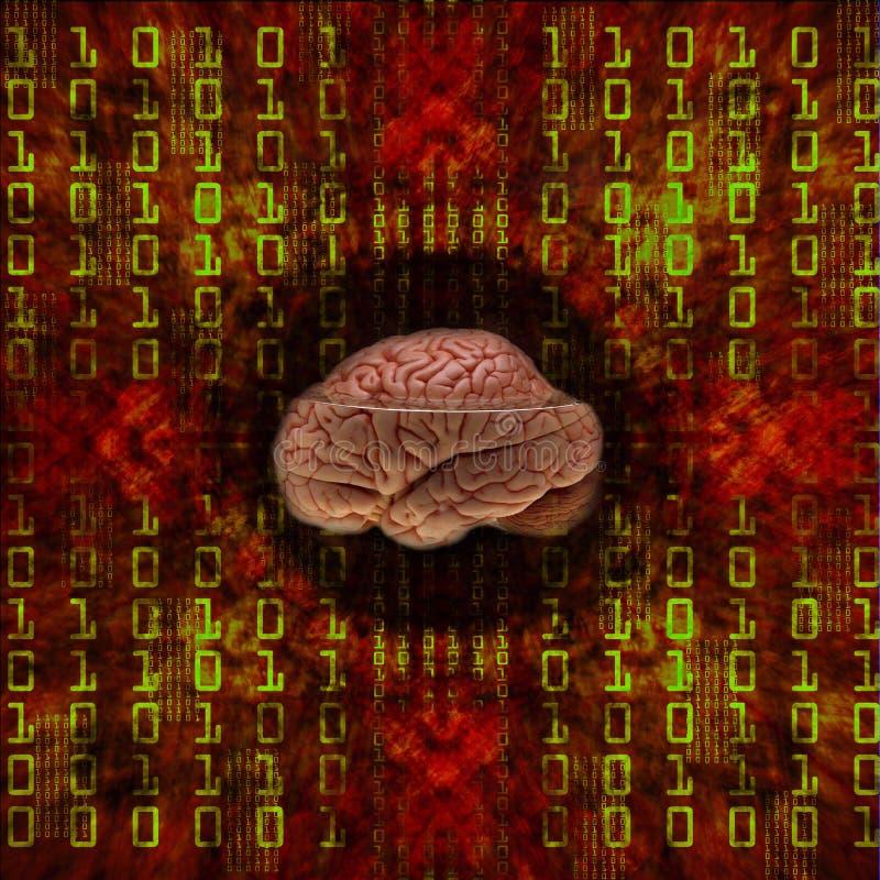 Digital-Gehirn stock abbildung