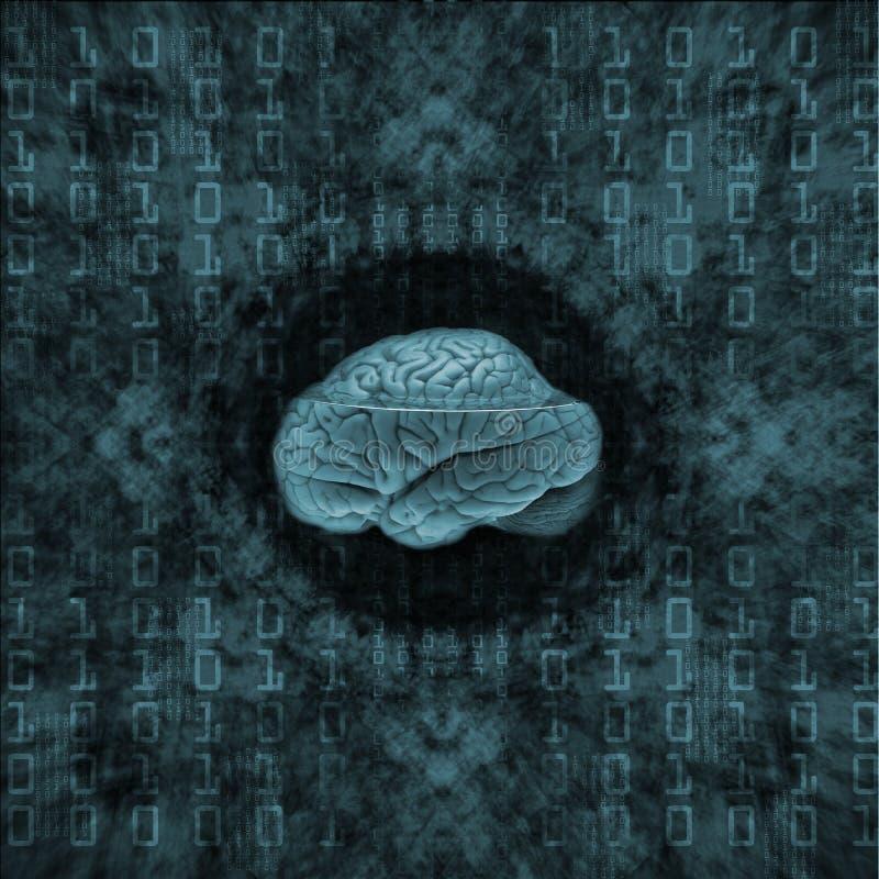 Digital-Gehirn lizenzfreie abbildung