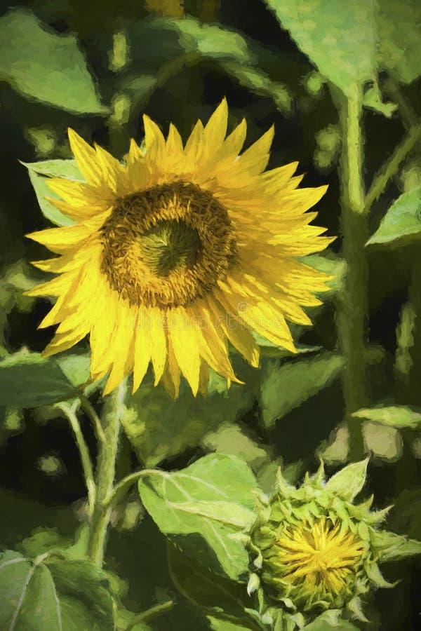 Digital gemalte goldene gelbe Sonnenblumen-Blüte stockfoto