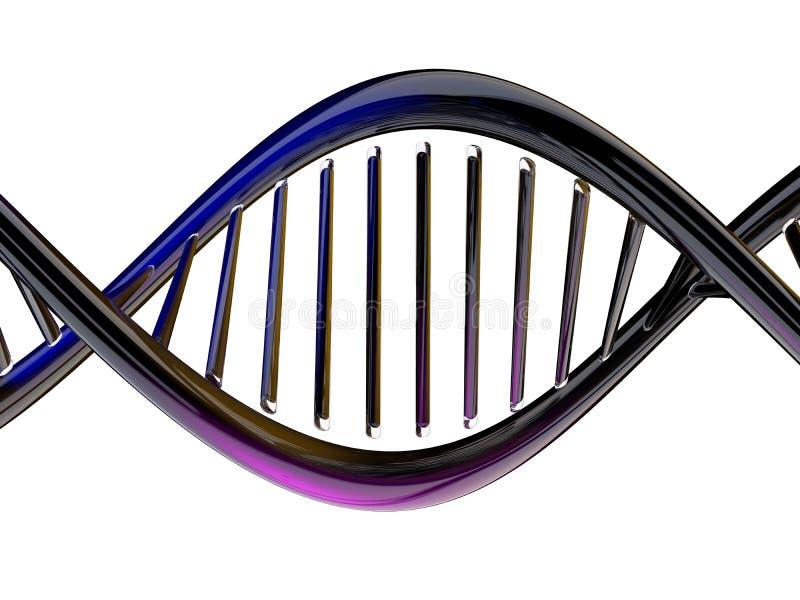 Digital illustration av en DNAmodell 3d stock illustrationer