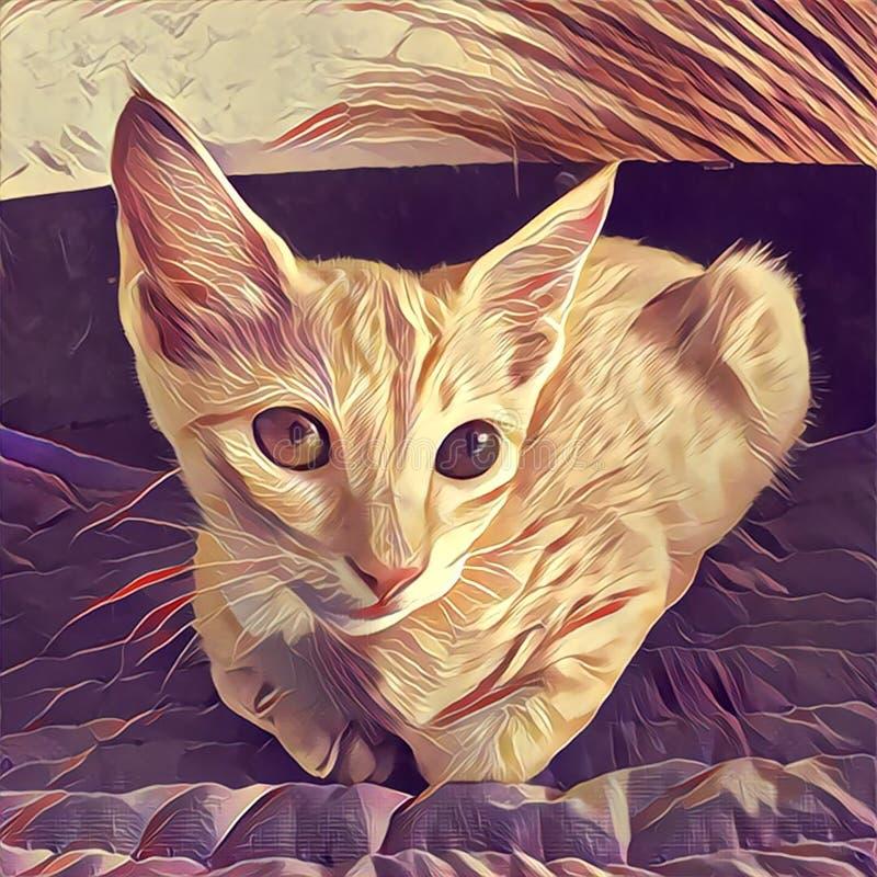 Digital-Illustration die Katze, die auf dem Kissen, mit dem emotionalen Anblick von orange Augen liegt vektor abbildung