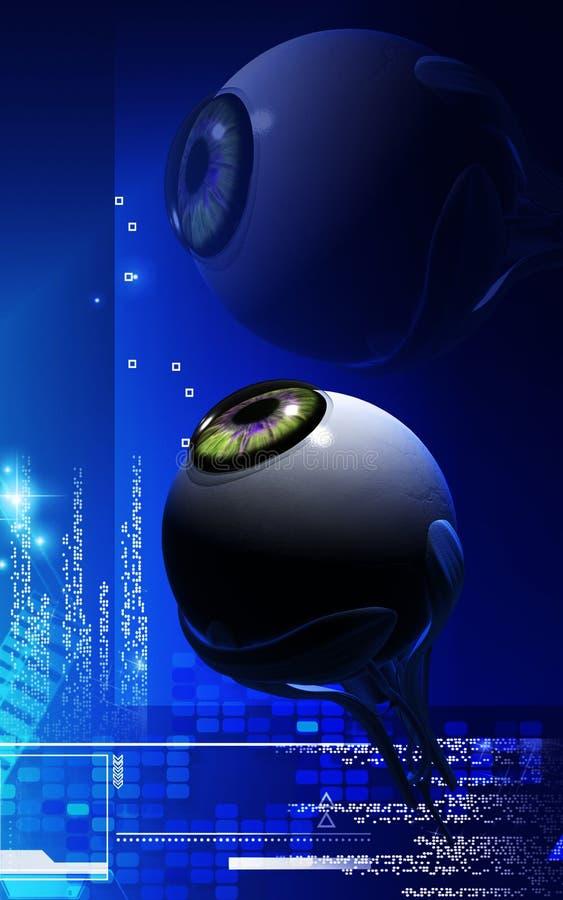 Eye. Digital illustration of eye in colour background vector illustration