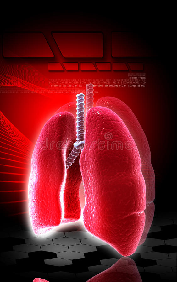 Download Human lungs stock illustration. Image of imagination - 29749002