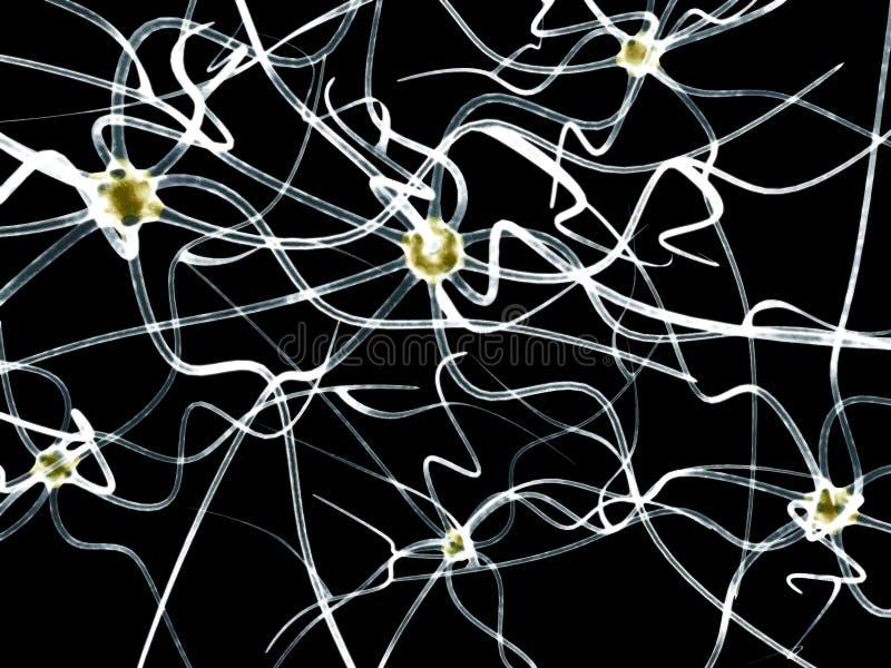 Digital-Illustration von Neuron Vektor stock abbildung