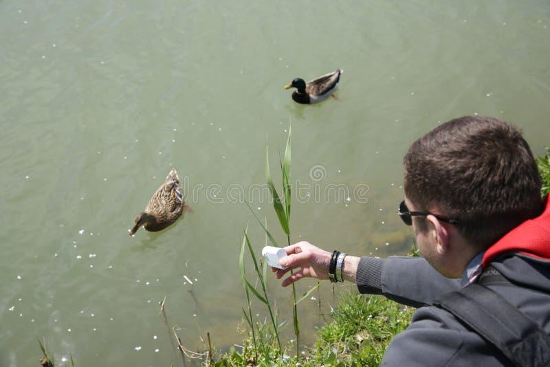 digital kamera 4K i händerna av änder för en skytte för ung man som simmar längs floden arkivbild